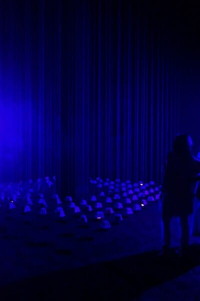 Lawren Spera and Steve Ingham, The night of the fire. Artfarm Pilastro, 2019